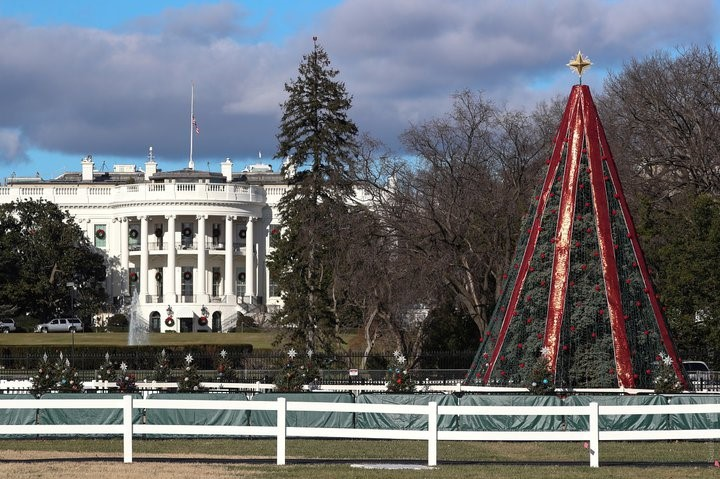 On The Main Tree Of The Usa The Illumination Broke It Can Not Be