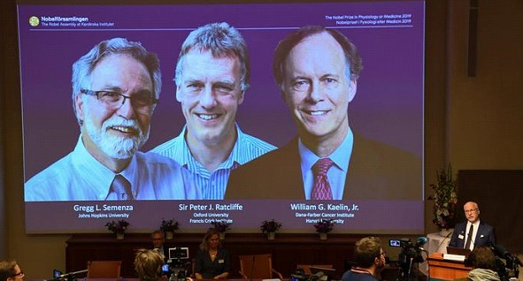 Nobel Prize winners in medicine were two Americans and a Briton