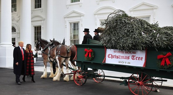 The White House is preparing to welcome the official Christmas tree