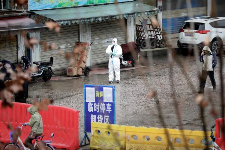 China has closed 13 cities due to coronavirus, and snakes are called the possible cause of the epidemic