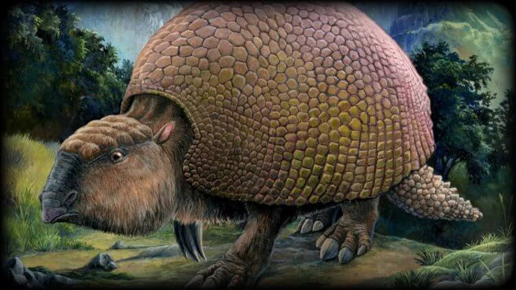 In Argentina, found the remains of the ancestors of armadillos the size of a car