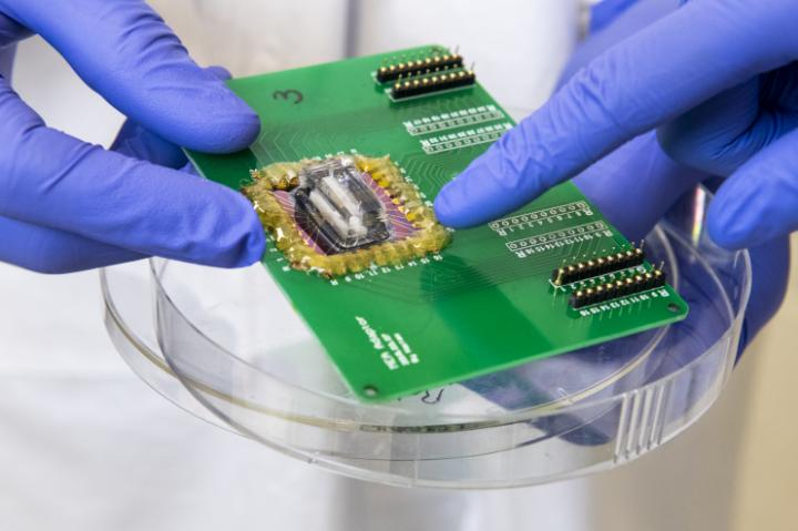 Scientists simulate a heart attack on a chip