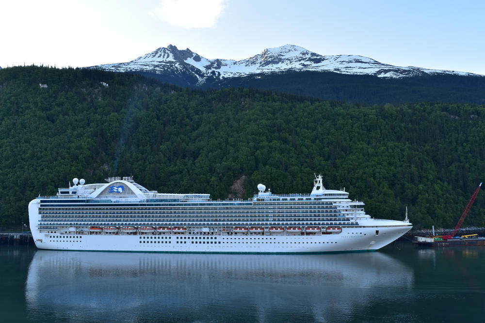 Coronavirus survives in Princess Cruise cabins 17 days after sick passengers leave