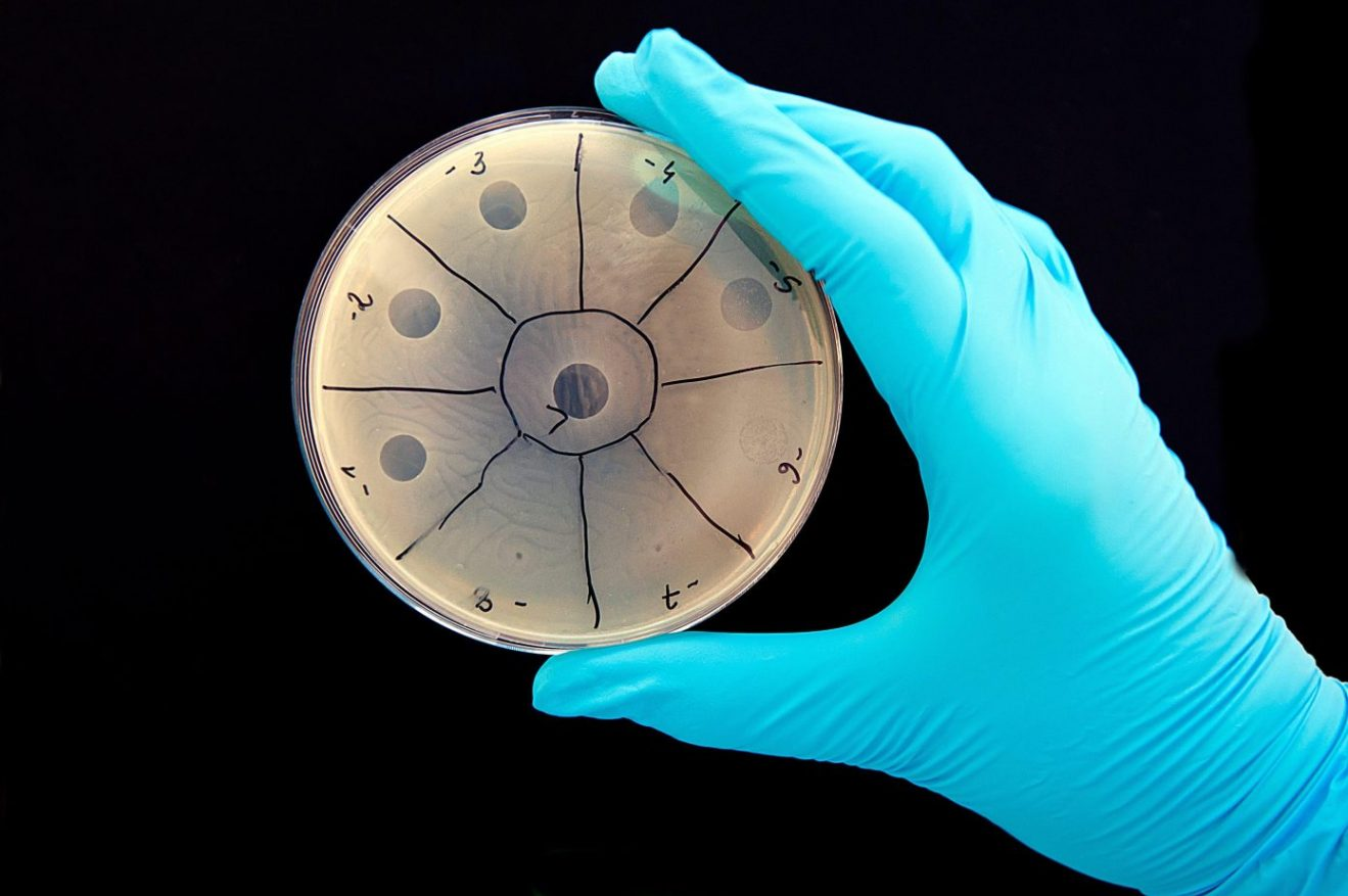 Scientists want to replace antibiotics with programmable viruses