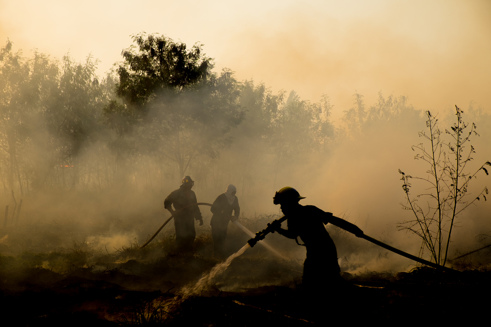 The average temperature on Earth exceeded pre-industrial indicators by 1,1°С