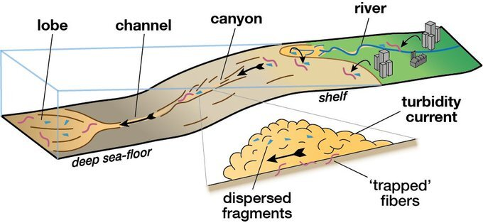 Research: flows after precipitation transfer microplastics to the depths of the oceans