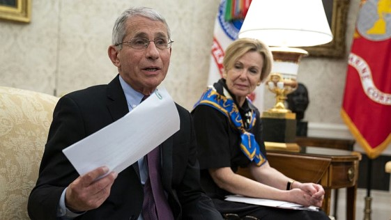 Dr. Fauci: remdesivir will become standard in the fight against coronavirus