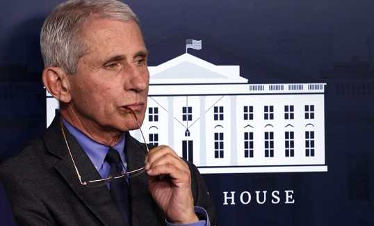 Fauci: a hasty return to normal life is extremely risky