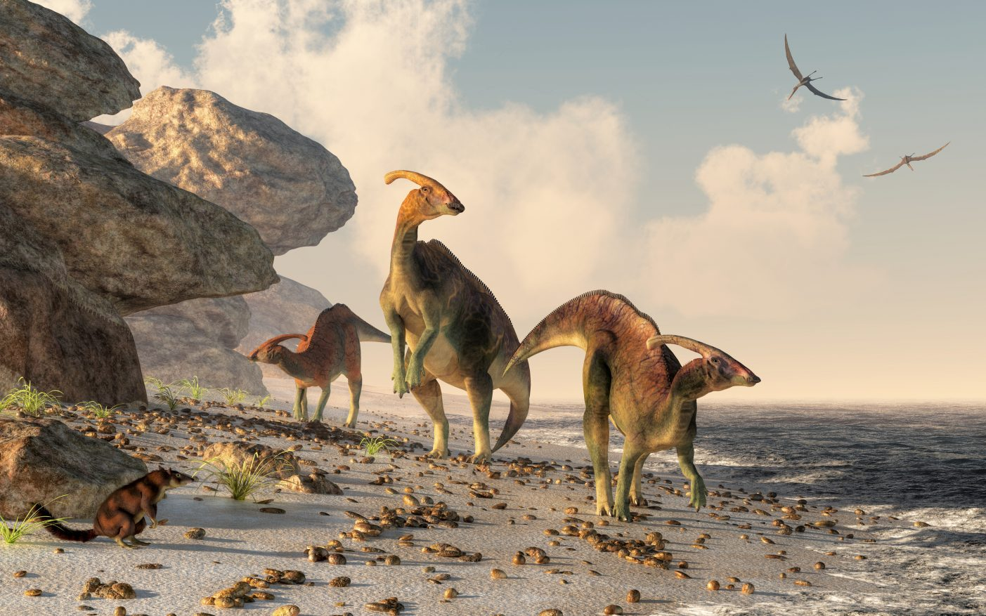 Isotopes in the teeth of dinosaurs showed where the ancient dinosaurs lived and what they ate