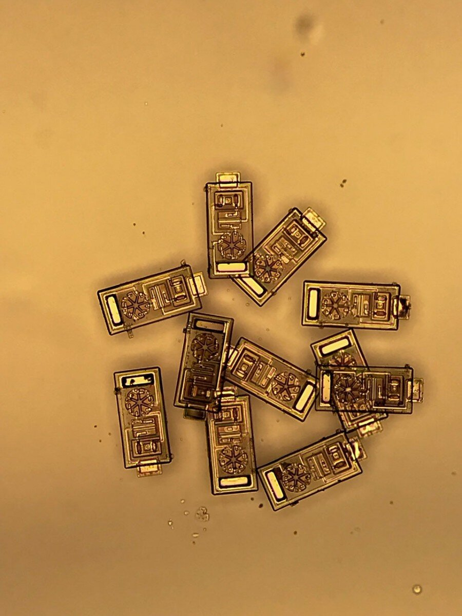 Scientists have created microscopic sensors – up to 300 thousand devices fit on one coin